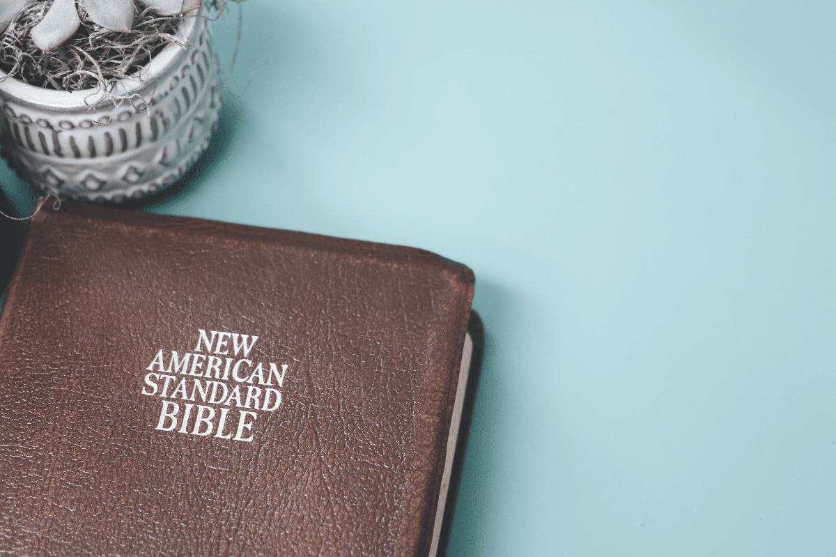 best nasb study bible